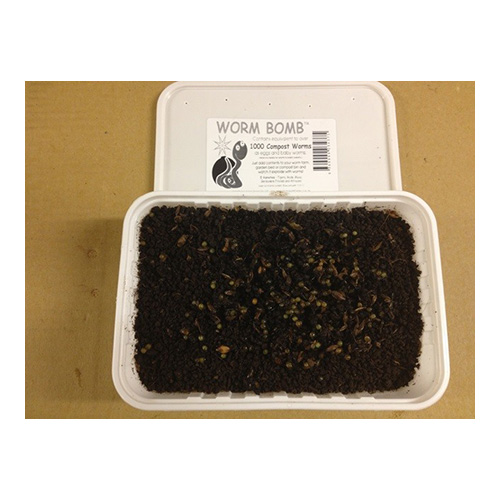 tub 2 - Compost Worm Bomb - Bulk Tub (12 x 1000 Eggs)